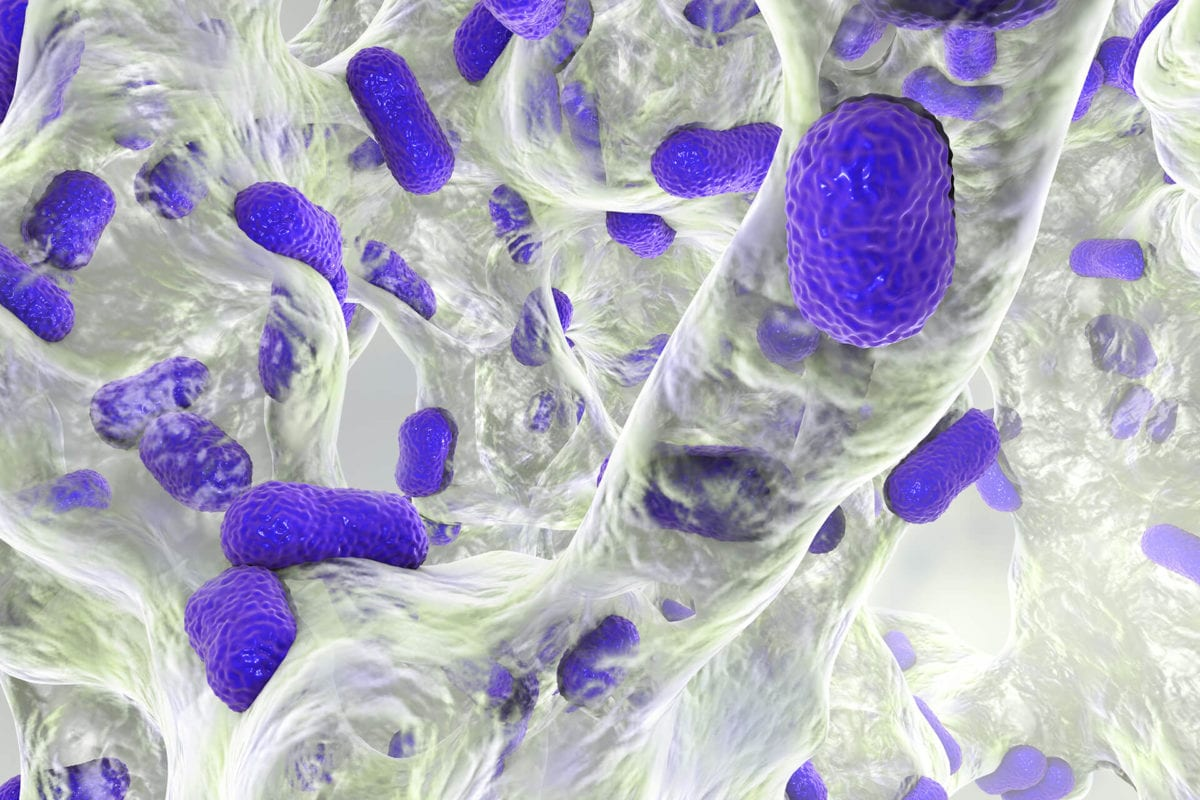 Why Every Medical Department Should Prioritize Infection Control