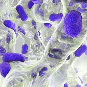 Is Infection Control Your Top Priority?